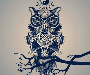 art and owl image