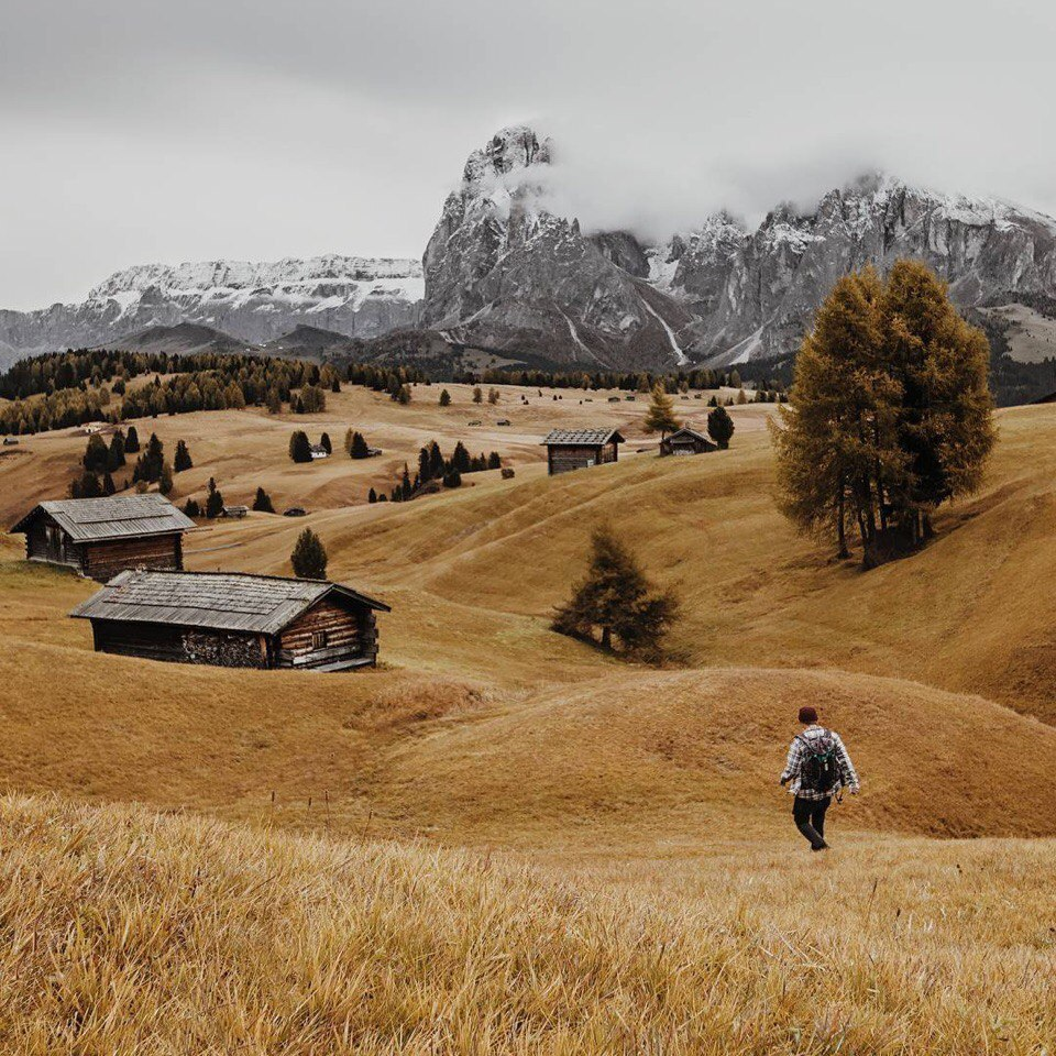 autumn, explore, and field image