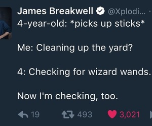 harry potter, Witches, and wizards image