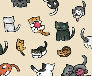 cat, wallpaper, and cute image