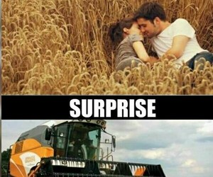 funny, lol, and surprise image