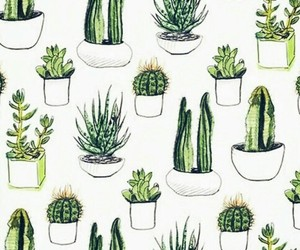 cactus, wallpaper, and plants image