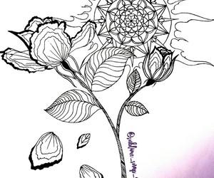 art, design, and rose image