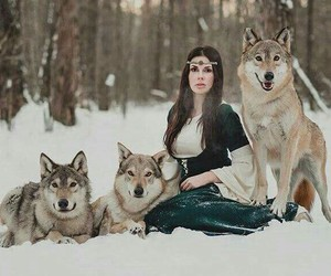 wolf, medieval, and nature image