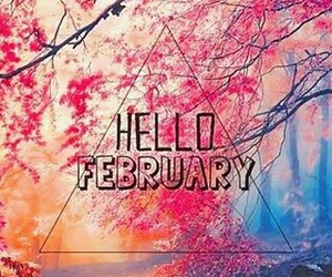 february, follow me, and instagran image