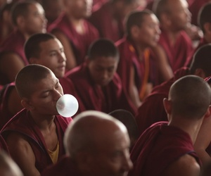 monk and bubble gum image