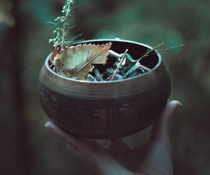 bowl, witchcraft, and herbalism image