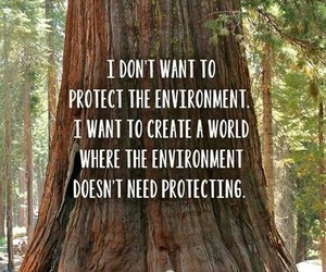 nature, environment, and quotes image