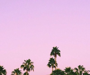 pastel, photography, and pink image
