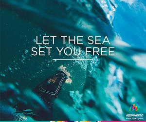 ocean, quote, and surf image
