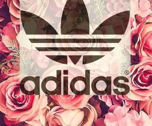 adidas, wallpaper, and rose image