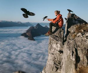 beautiful, outdoors, and birds image