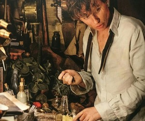 eddie redmayne, harry potter, and newt scamander image
