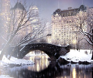 Central Park, snow, and nyc image