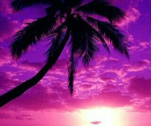 purple, beach, and sunset image