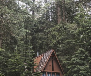 aesthetic, camping, and chalet image