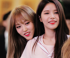 beauty, kpop, and mamamoo image