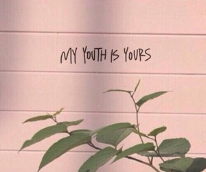 youth, quotes, and pink image