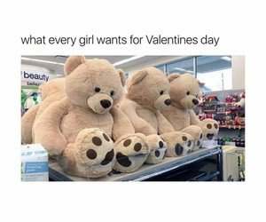 cutie, teddybear, and valentines day image