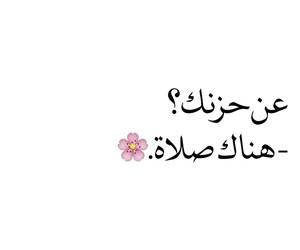 allah, islam, and pray image