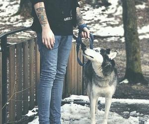 dog, boy, and tattoo image