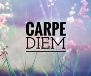 carpe diem image