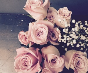 beautiful, flower, and flowers image