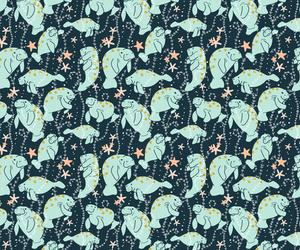 background, sea, and manatees image