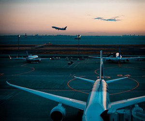 airplane, airport, and photography image