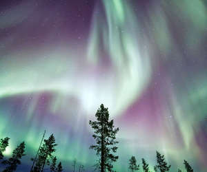 beautiful, aurora, and nature image
