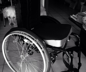 chair, handicap, and hospital image