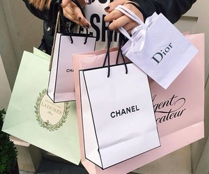bags, chic, and dior image