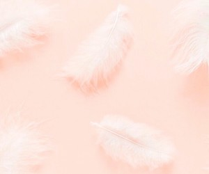 wallpaper, blue, and feather image
