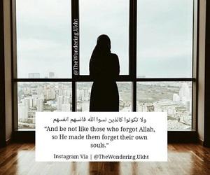 allah, dz, and quran image
