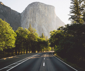 nature, travel, and road image