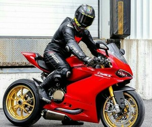 bikes, panigale, and ducati image