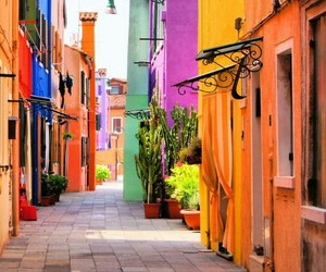 colorful and street image