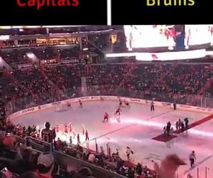 boston bruins, washington capitals, and hockey image