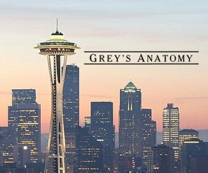 Greys and grey's anatomy image