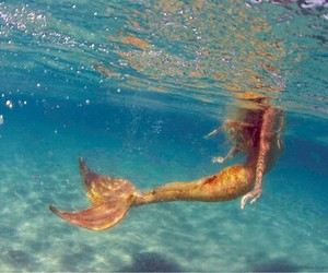 mermaid, ocean, and water image