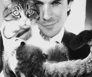 cat, ian somerhalder, and sexy image