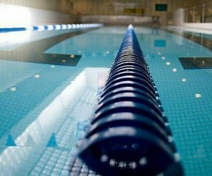 blue, pool, and swim image