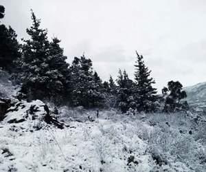 nieve, mx, and zacatecas image