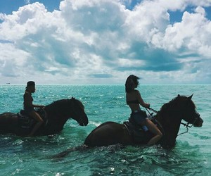 horse, summer, and ocean image