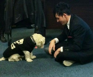Gotham, oswald cobblepot, and robin lord taylor image