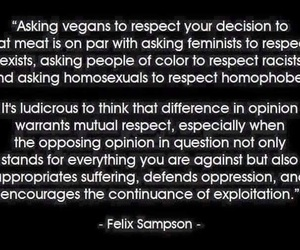 feminism, homosexual, and quote image