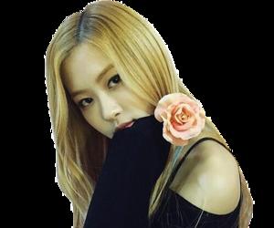 png, blackpink, and rose image