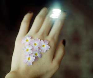 flowers, girl, and hand image
