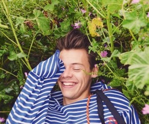 flower, Harry Styles, and 1d image