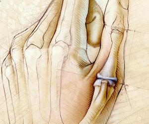 art, artwork, and bones image